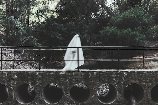 Fantasma sombrio andando no viaduto na floresta Foto gratuita