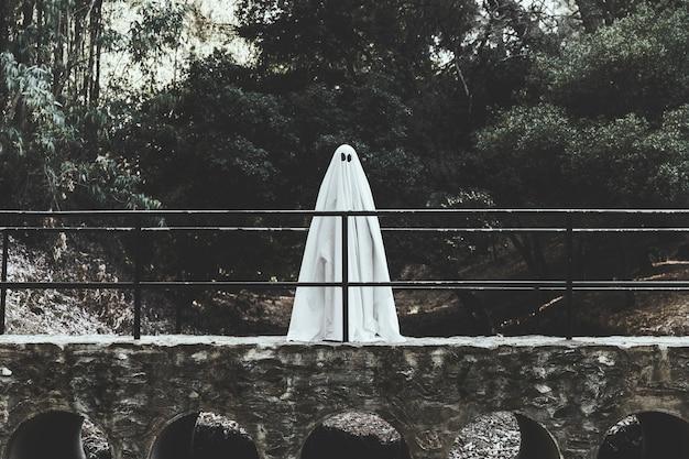 Fantasma sombrio em pé no viaduto na floresta Foto gratuita