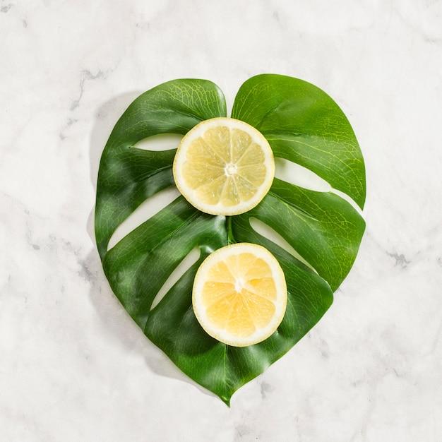 Fatias de limão na folha de monstera Foto gratuita