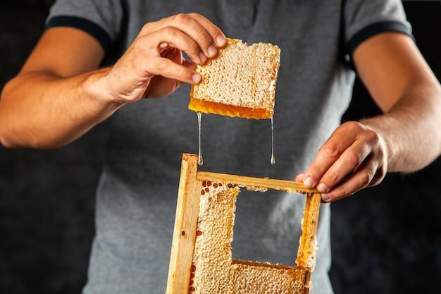 Favo de mel em uma moldura de madeira Foto Premium