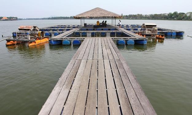 Fazenda de peixes localizada no país tailandês Foto Premium