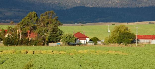 Fazenda e árvores Foto gratuita