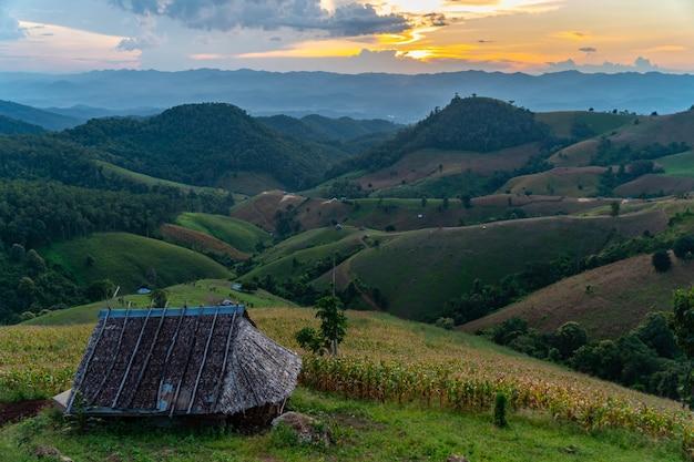 Fazenda nas colinas com casa de campo de madeira e nublado na estação verde da província de mae hong son, norte da tailândia. Foto Premium