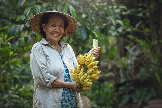 Fazendeiro asiático da mulher que guarda a banana na exploração agrícola orgânica. sorriso cara de fazendeiro. fazenda de banana tailândia. Foto Premium