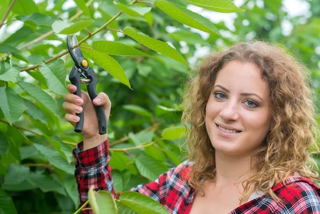 Fazendeiro podando galhos de árvores frutíferas em pomar Foto gratuita