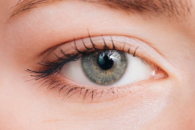 Fechar o retrato dos olhos da mulher Foto Premium