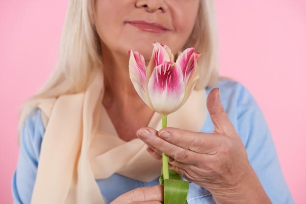 Fechar-se. mulher idosa está cheirando tulipa. Foto Premium