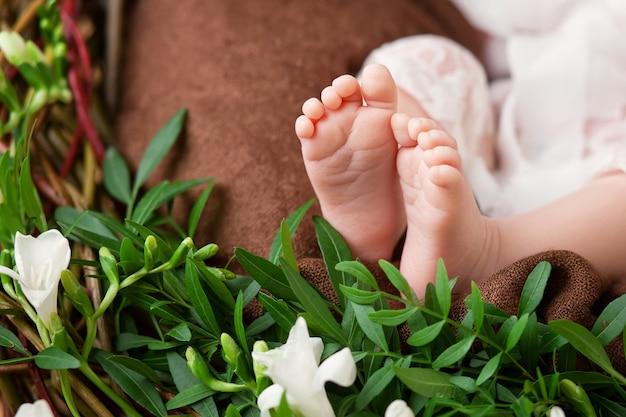 Feche a foto dos pés do bebê recém-nascido em uma manta de malha e flores Foto Premium