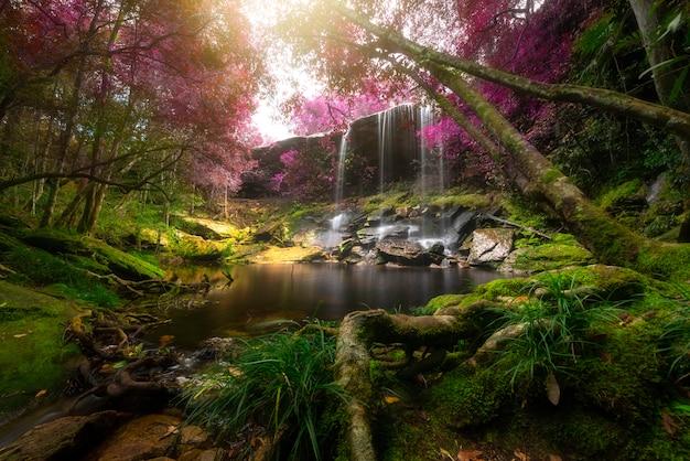 Feche acima da cachoeira da vista na floresta profunda no parque nacional, cena do rio da cachoeira. Foto Premium