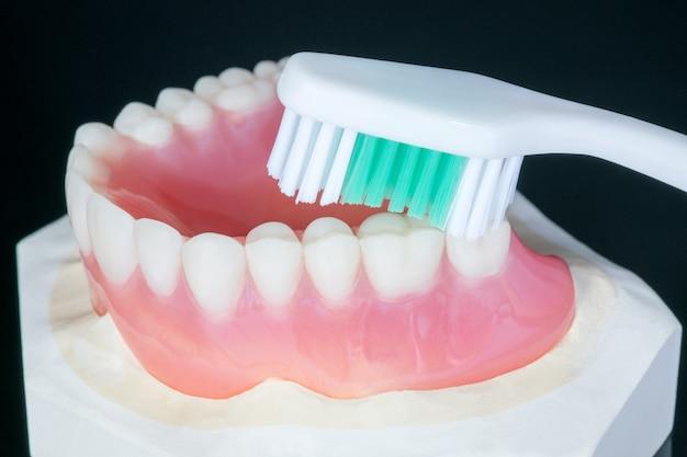 Feche acima, dentadura completa ou dentadura completa no fundo preto. Foto Premium