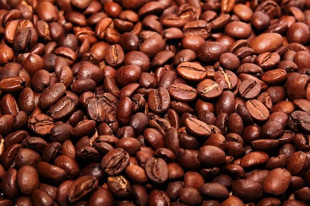 Feijão de café Foto Premium