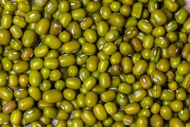 Feijão verde Foto Premium