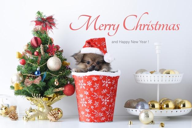 Feliz ano novo, natal, cachorro com chapéu de papai noel, bolas de celebração e outra decoração Foto Premium
