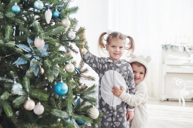 Feliz natal e boas festas! jovens ajudando a decorar a árvore de natal, segurando alguns enfeites de natal na mão Foto Premium