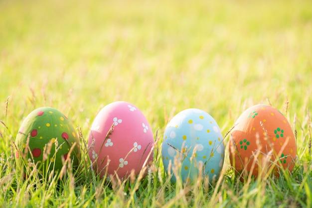 Feliz páscoa! ovos de páscoa coloridos closeup no campo de grama verde durante o pôr do sol Foto Premium