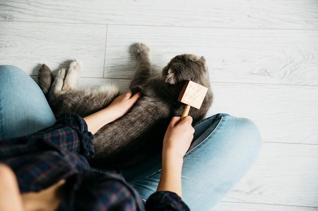 Fêmea, penteando o gato favorito no chão Foto gratuita