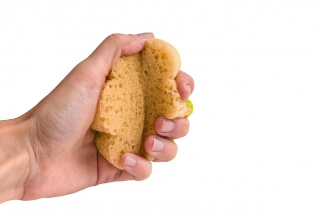 Feminino mão aperta uma esponja para lavar a louça. Foto Premium