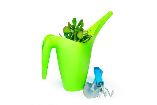 Ferramentas de jardim isoladas no branco Foto Premium