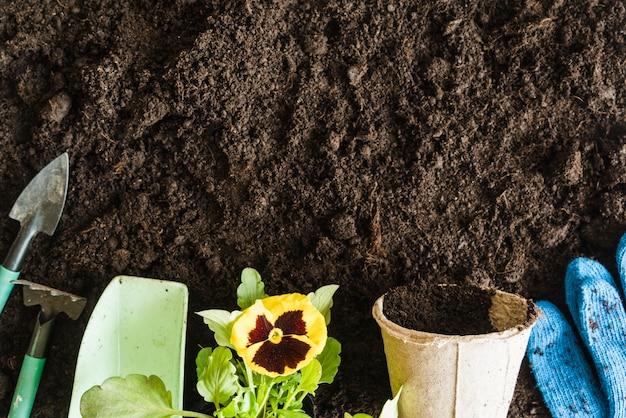 Ferramentas de jardinagem; colher de medição; flor de amor-perfeito; pote de turfa e jardinagem luvas azuis no pano de fundo do solo Foto gratuita