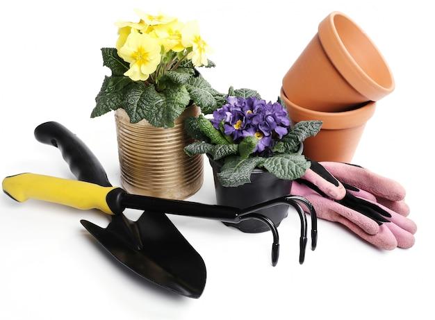 Ferramentas de jardinagem e vaso de flores isoladas Foto gratuita
