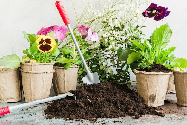 Ferramentas de jardinagem no solo com plantas em vasos de turfa Foto gratuita
