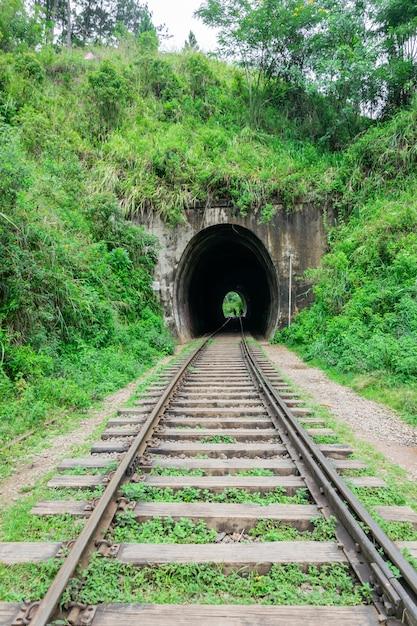 Ferrovia que leva ao túnel. um túnel em uma ferrovia passando por uma floresta tropical. estrada de ferro entre a natureza verde, sri lanka. viajar de trem Foto Premium
