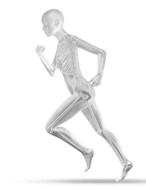 Figura médica feminina 3d com corridas de esqueleto Foto gratuita
