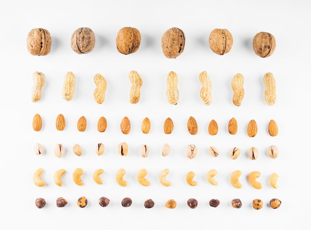 Fila de nozes; amendoim; amêndoas; pistachios; avelã e castanha de caju no fundo branco Foto gratuita