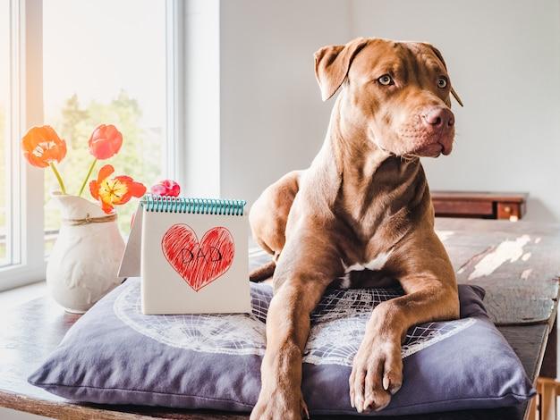 Filhote de cachorro encantador e desenho de coração. vista lateral Foto Premium