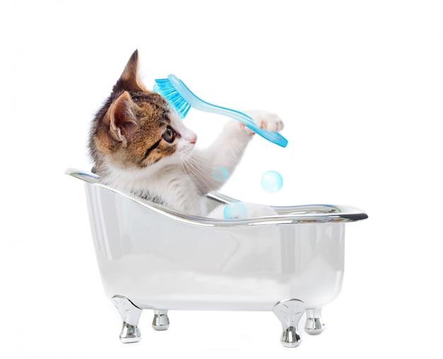 Filhote de gato na banheira Foto Premium