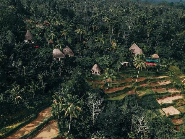 Fim de semana de férias relaxando em luxo com a villa tropical jungle bali, indonésia Foto Premium