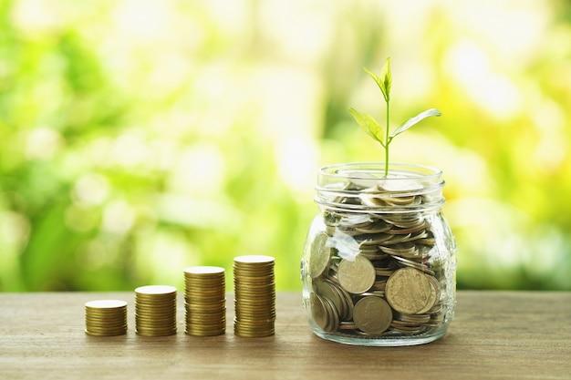 Finanças e contabilidade conceito dinheiro pilha com planta crescer no jarro de vidro e moedas Foto Premium