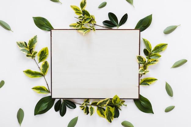Flat lay de modelo de cartão de papel com folhas Foto gratuita