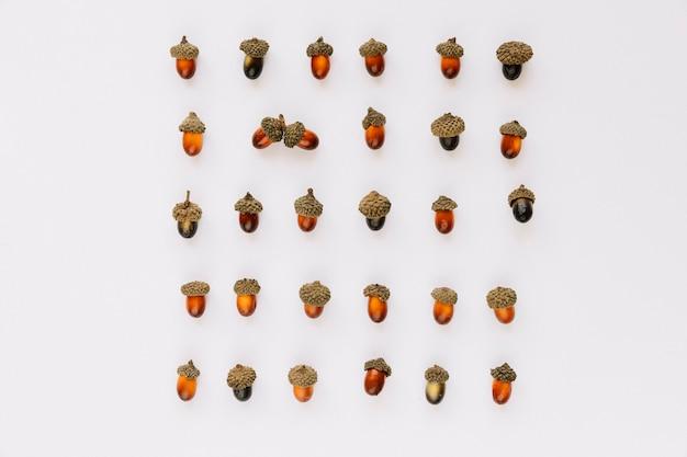 Flat leigos de bolotas quadradas Foto gratuita
