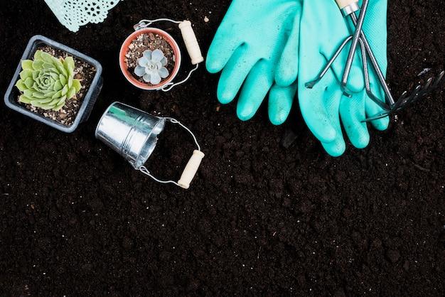 Flat leigos de plantas e ferramentas de jardinagem Foto gratuita
