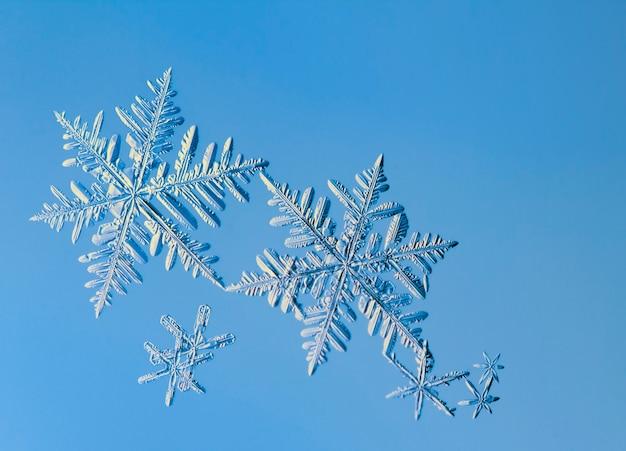 Floco de neve, cristal natural em vidro. belo padrão geométrico natural. concerto de inverno, gélido ou ano novo. Foto Premium