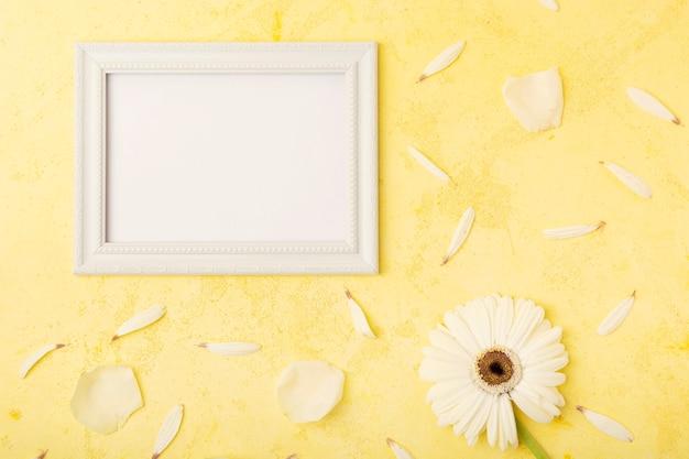 Flor branca elegante e pétalas com moldura de espaço de cópia horizontal Foto gratuita