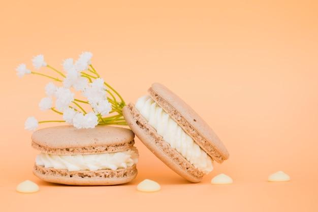 Flor branca perto os macaroons em pano de fundo colorido Foto gratuita