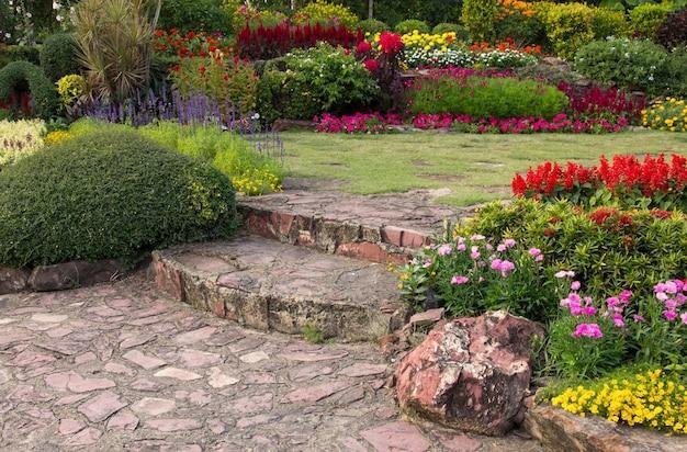 Flor colorida no jardim Foto gratuita