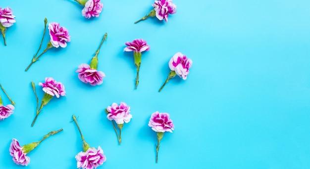 Flor cravo sobre fundo azul. Foto Premium