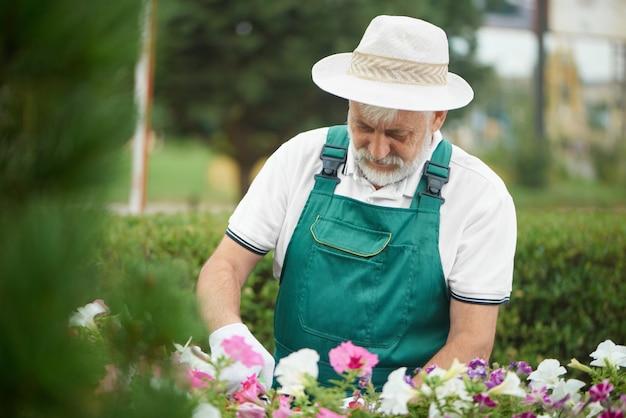 Flor de corte masculina superior do trabalhador na gaveta no jardim. Foto Premium