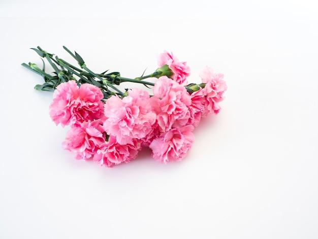 Flor de cravos rosa para o dia das mães Foto Premium