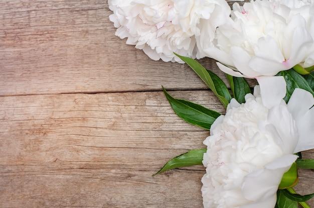 Flor de peônia branca na madeira Foto Premium
