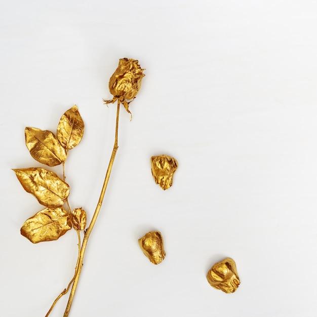 Flor dourada rosa close-up com pétalas de outono, flor da moda. Foto Premium