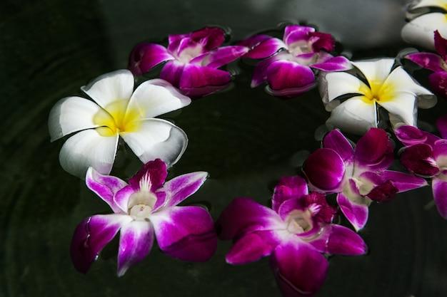 Flor flutuante. plumeria com orquídea Foto Premium