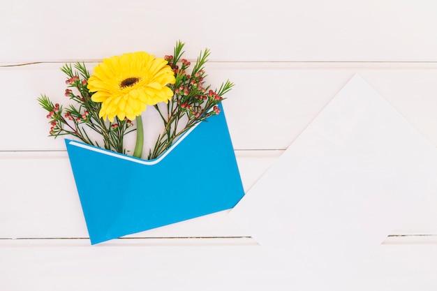 Flor gerbera em envelope com papel Foto gratuita