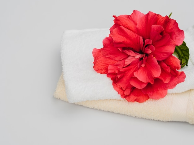 Flor vista frontal e toalhas Foto gratuita