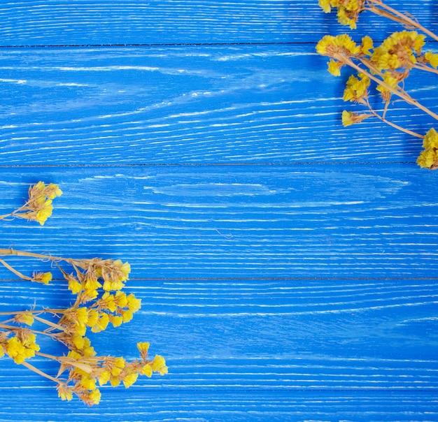 Flores amarelas secas, formando um quadro sobre um fundo azul de madeira brilhante Foto Premium