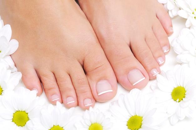 Flores ao redor de lindos pés femininos com pedicure francesa Foto gratuita