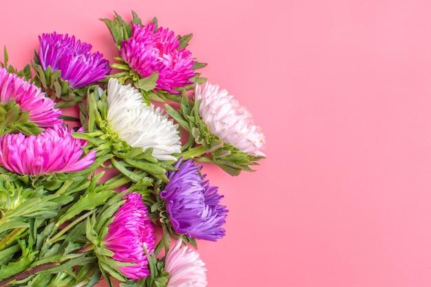 Flores bonitas do áster no fundo da cor do rosa pastel. lay plana. Foto Premium